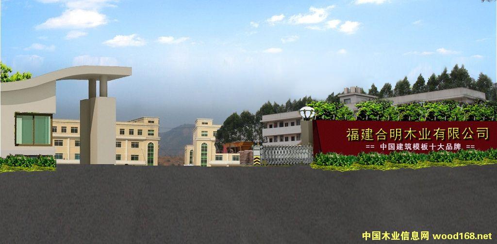 漳州合明木业有限公司