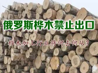 俄罗斯桦木禁止出口,桦木加工行业将何去何从?
