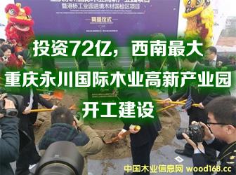 重庆永川国际木业高新产业园开工建设
