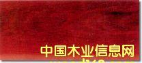 中文名:铁线子 市场俗称:红檀、南美樱木