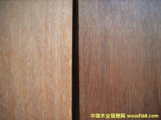澳大利亚红檀原木(又称澳大利亚红木Jarrah)