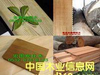 山东防腐木、柳桉木、菠萝格