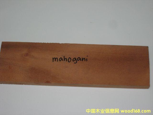 桃花心木(MAHOGANY)
