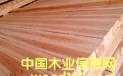 杉木建筑方