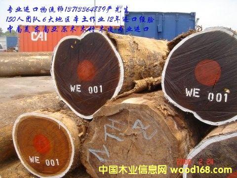 进口美洲白橡/红橡/杉木进口报关