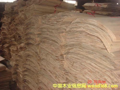 白杨木旋切板
