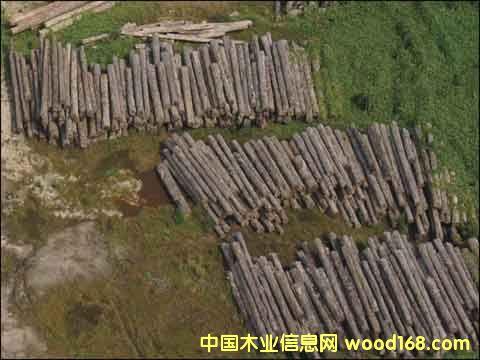 木材5-中国木业信息网产品展示中心