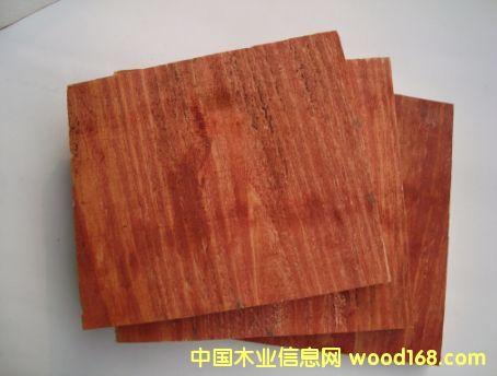 松木模板的详细介绍
