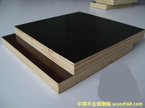 杨木模板的详细介绍
