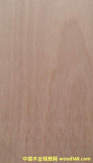 锯切西南桦实木表板