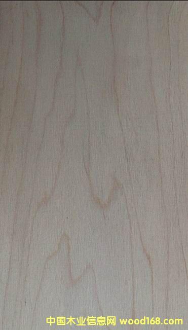 锯切枫木实木表板