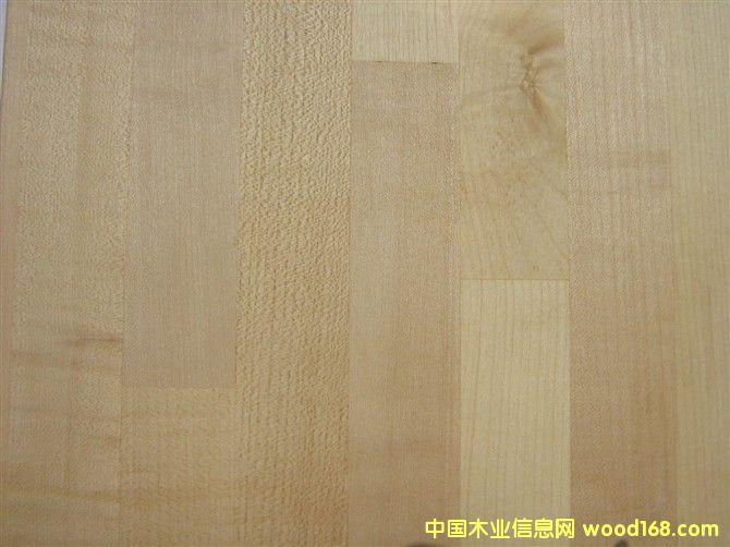 枫木Maple(Eur.)