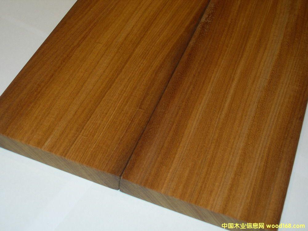 大美木豆(Afrormosia)俗称非洲柚木王