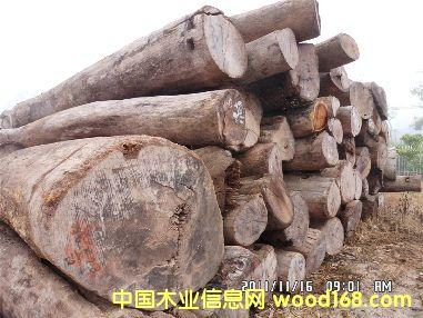 老挝酸枝原木