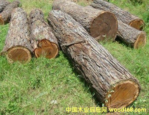 酸枝红价格,最新木材市场价格和走势-中国木业信息网