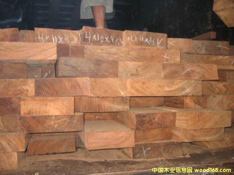 高级家具用木 Zenisero