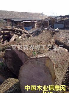 优质青岗木原木