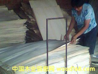 杨木皮子15936399521