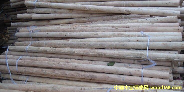 园木棒、木芯1