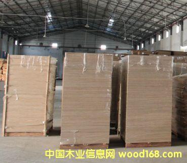 桉木芯胶合板(1220mm*2440*12mm冰糖果面底)