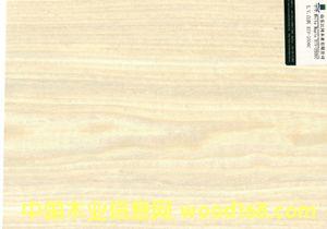 白枫2506C