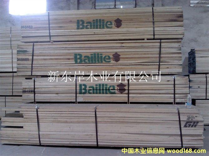黄杨-Baillie