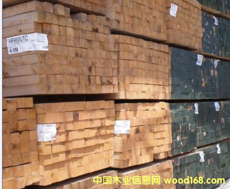 加拿大松木板材专栏