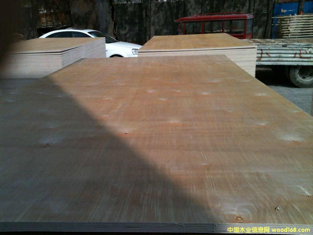 桦木胶合板