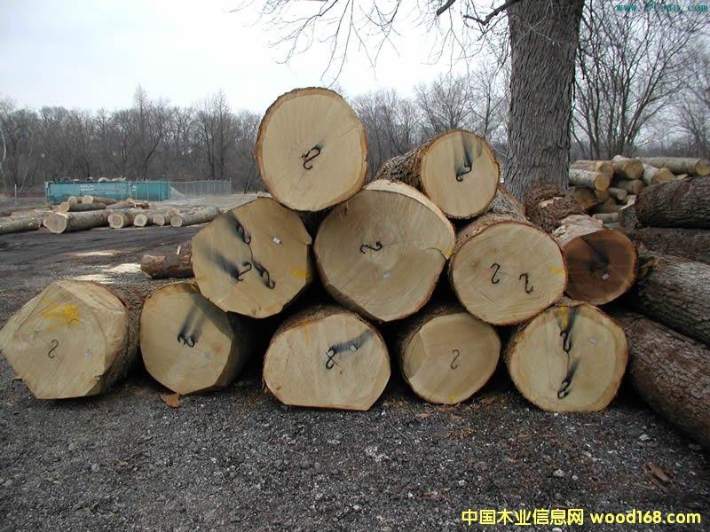 几内亚原木