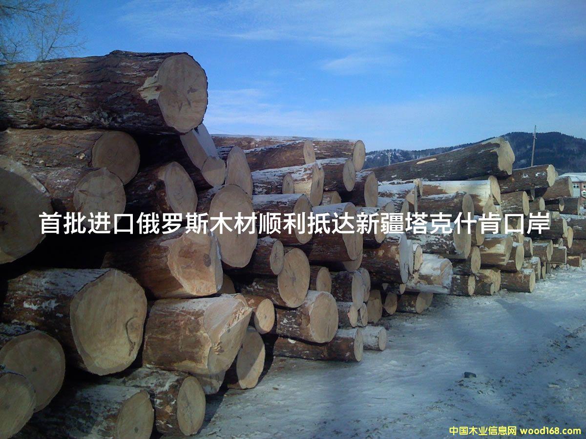 首批进口俄罗斯木材顺利抵达新疆塔克什肯口岸