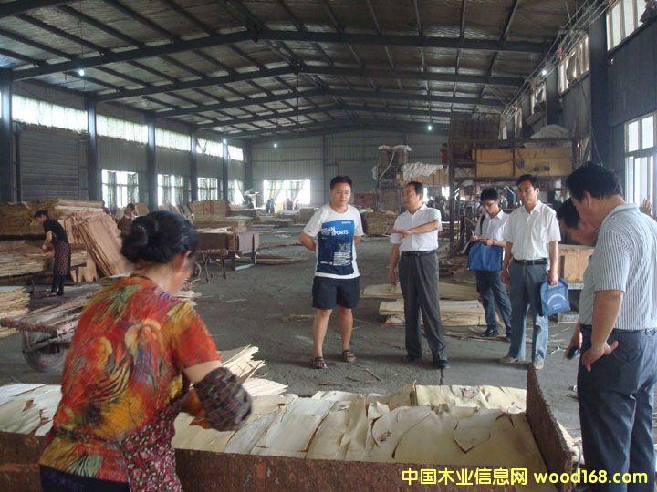 宿州市林产工业协会赴萧县张庄寨木材加工产业园调研