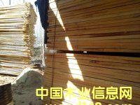 白杨木板材