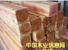 欧美材――黄杨――木方的详细介绍