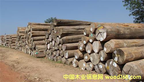 生长于东南亚热带原始森林,且以缅甸产区最好.