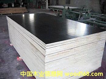 供应中南神箭1830x915建筑模板厂家