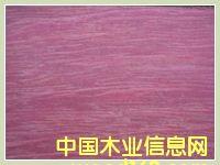 南美紫心木