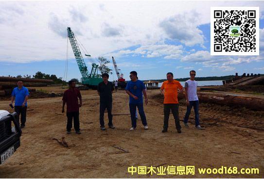 中国林产品集团公司考察巴新森林资源及加工企业