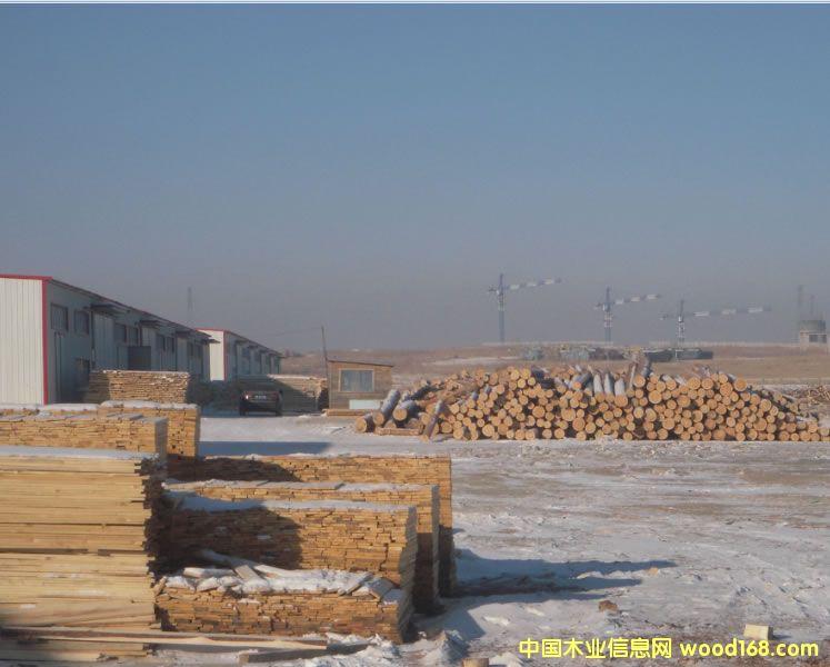满洲里国际木材交易中心现场(图片由满洲里木材网提供)