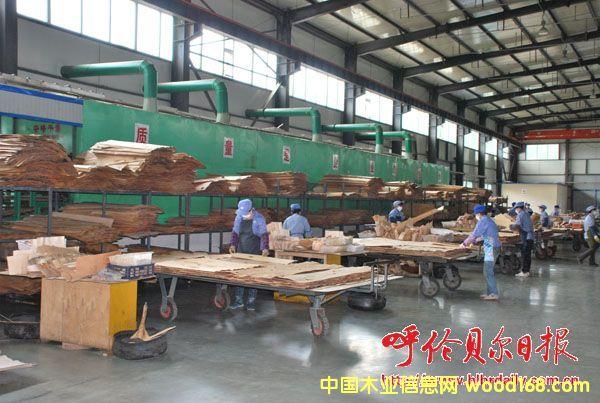 内蒙古扎兰屯市积极做大做强木材深加工产业
