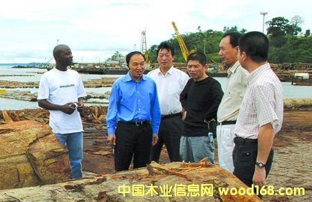加蓬木材的温州人