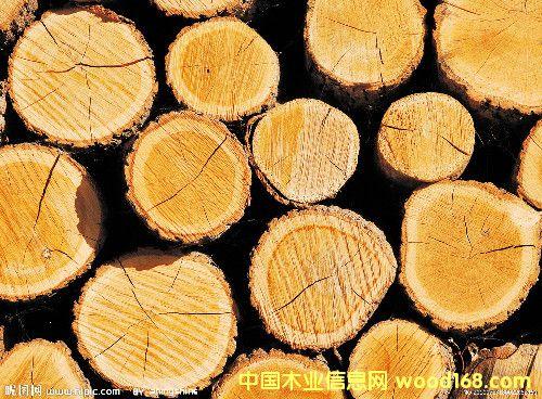 德州木材交易市场