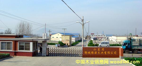 山东郓城锦源木业