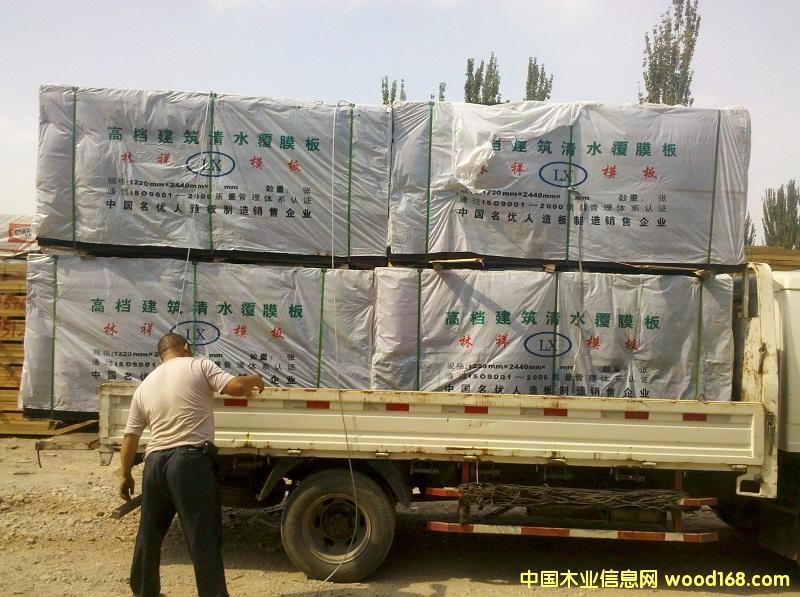 郓城县清水模板发货