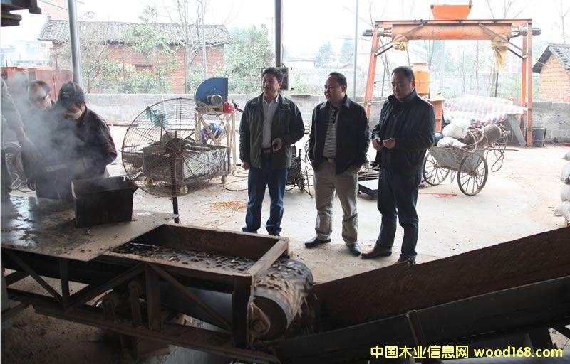 维都林场曾辉书记参观柳州木煤项目