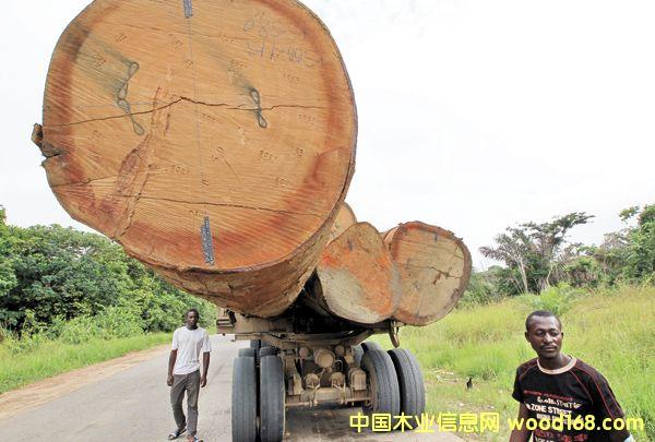 加蓬木材加工厂数量已达129家