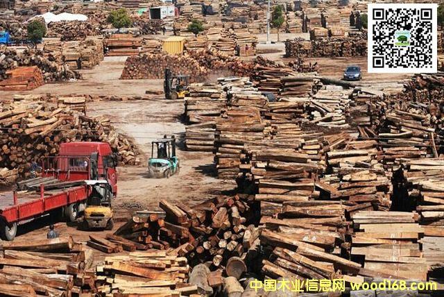 东阳花园原木市场:年红木原木交易装了3万个集装箱