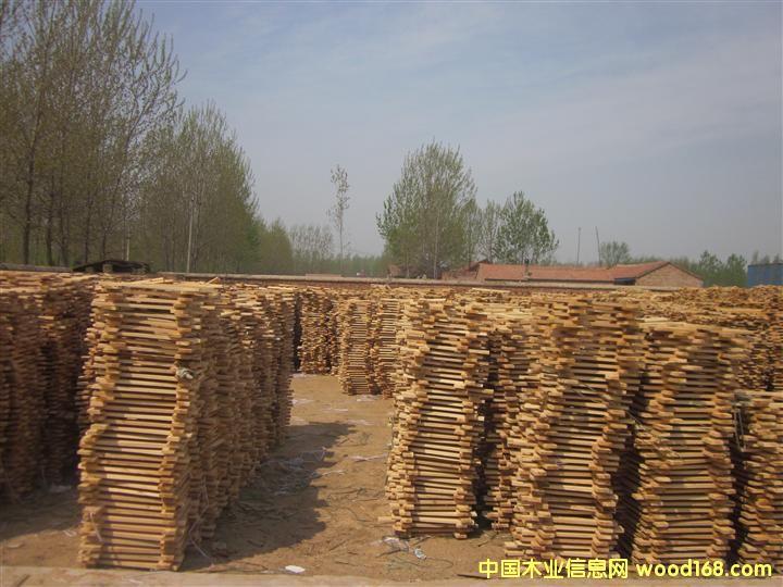 山东曹县庄寨辉达木业