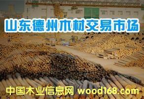 德州山东木材市场
