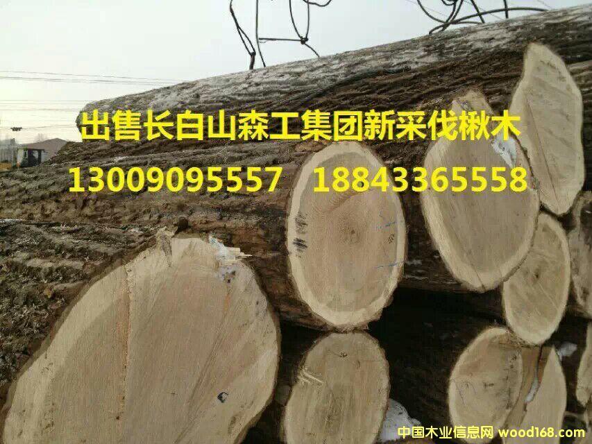 东北木材-中国木业信息网产品展示中心