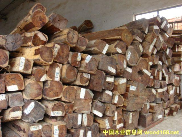 老挝交趾黄檀进口货源信息和上海港进口清关物流